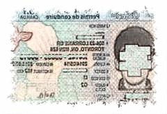 加拿大驾照翻译驾驶证换取国内驾照车管所认可翻译公司