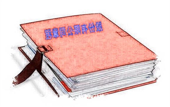 香港公司章程英语翻译中文有哪些特点,哪里可以翻译公司章程