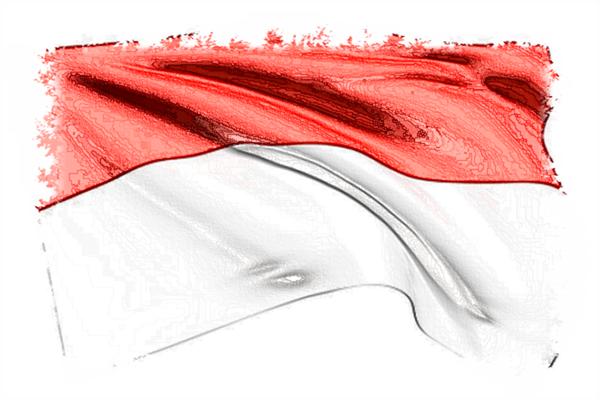 <font color='#006600'>印度尼西亚语翻译</font>