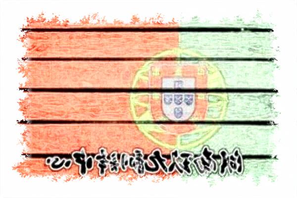 湖南长沙哪里有葡萄牙语翻译公司葡萄牙语翻译价格?