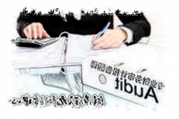 财务审计报告翻译哪家最