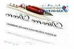 国外离婚证明翻译美国离婚判决书翻译法律翻译中文案例