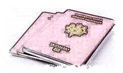 法国护照翻译多少钱?