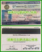 国外驾照翻译泰国驾驶证翻译模板
