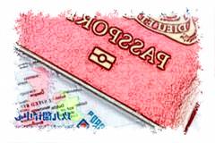 海外工作申请证明的翻译文件签证翻译
