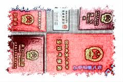 出国留学证件翻