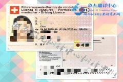湖南省郴州车管所认可的驾驶执照翻译公司郴州国外驾照翻译在哪里翻译